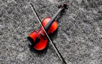 Oxana Dodon Professional Violin